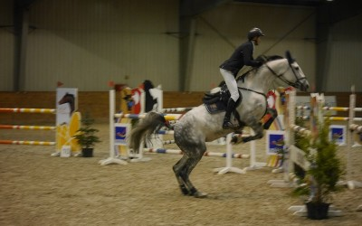 Zawody jeździeckie w Lesznie (galeria)